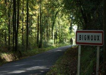 Bignoux