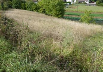 Beaumont-la-Ronce