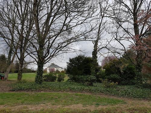 Terrain constructible à Civray-de-Touraine