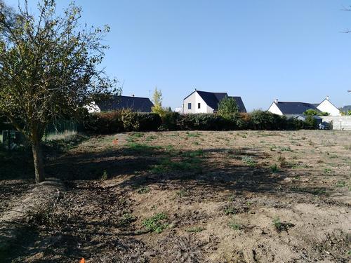Terrain constructible à Saint-Lambert-des-Levées