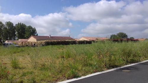 Terrain constructible à Mauléon