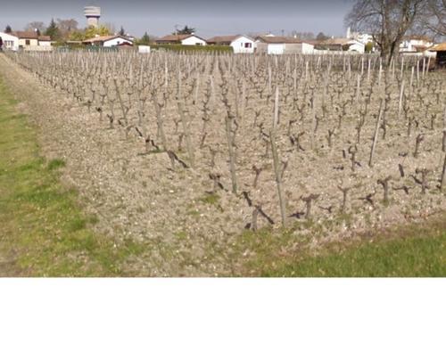 Terrain constructible à Toulenne