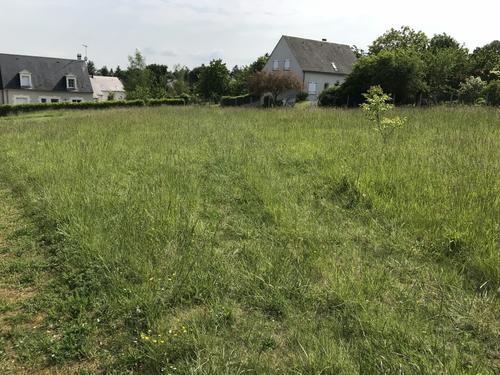 Terrain constructible à Ferrière-sur-Beaulieu
