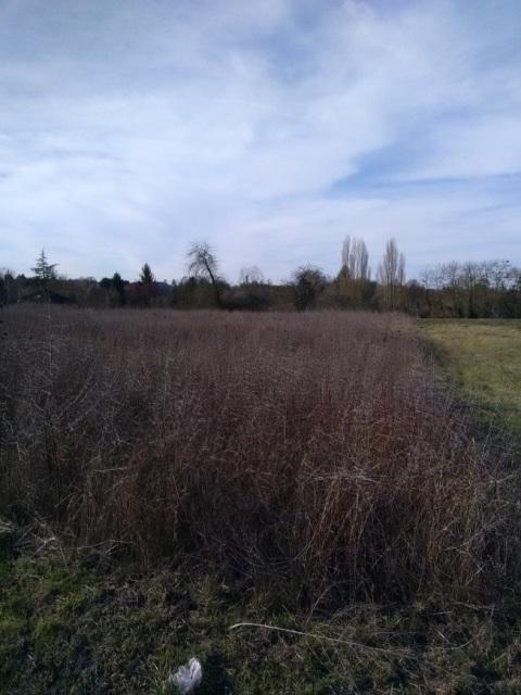 Terrain constructible à Beaulieu-sur-Loire