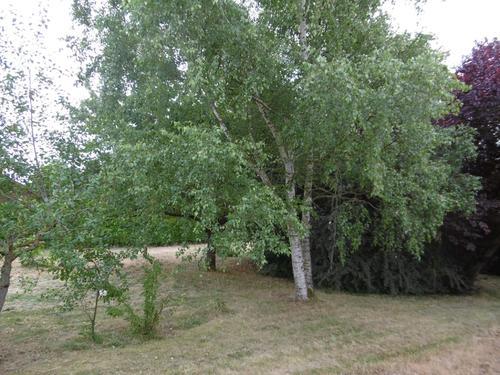 Terrain constructible à Pithiviers-le-Vieil