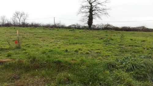 Terrain constructible à Yzernay