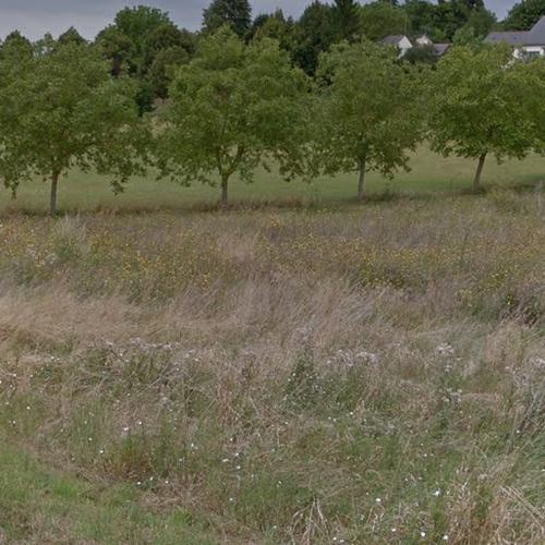 Terrain constructible à Roche-Clermault