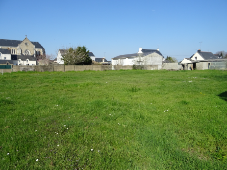 Terrain constructible à Saint-Dolay