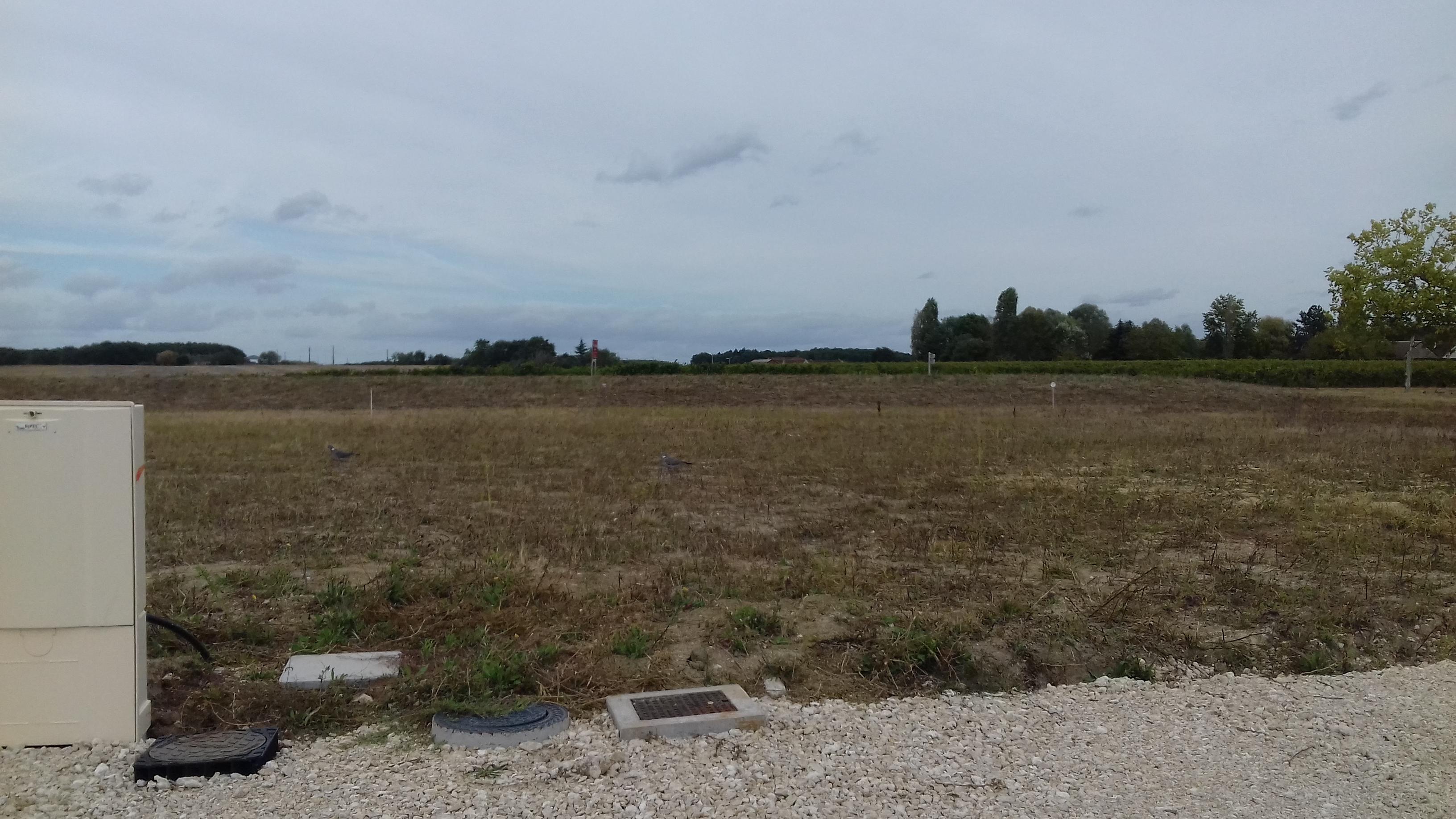 Terrain constructible à Cour-Cheverny