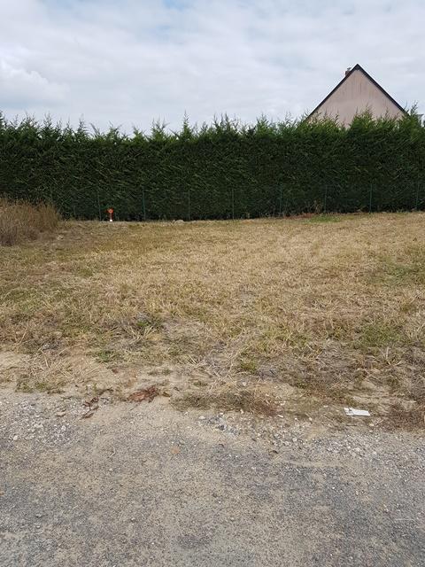 Terrain constructible à Villeperdue