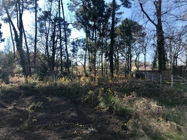 Terrain constructible à Mérignac