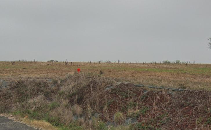 Terrain constructible à Saint-Georges-du-Bois