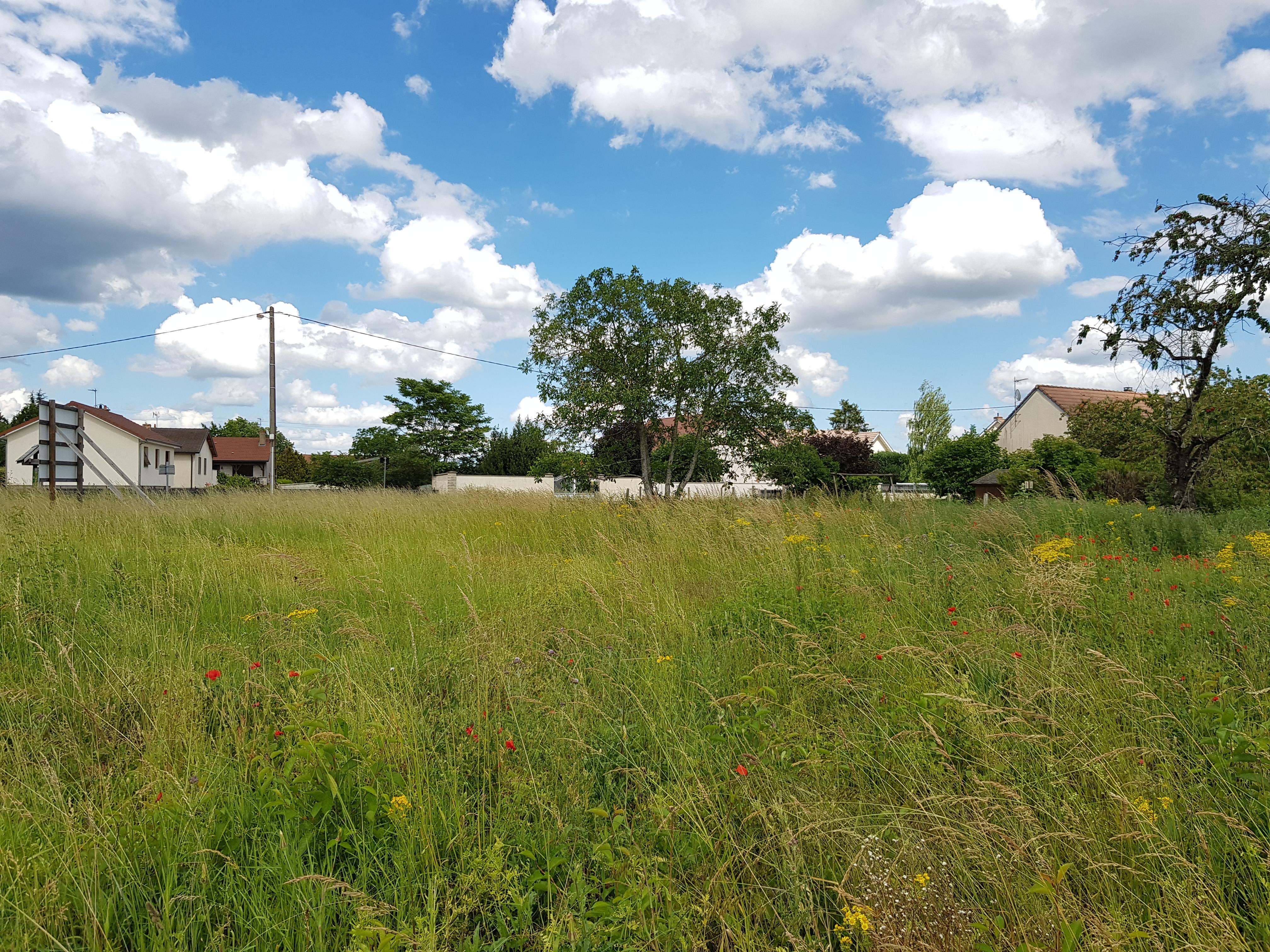 Terrain constructible à Collonges-lès-Premières