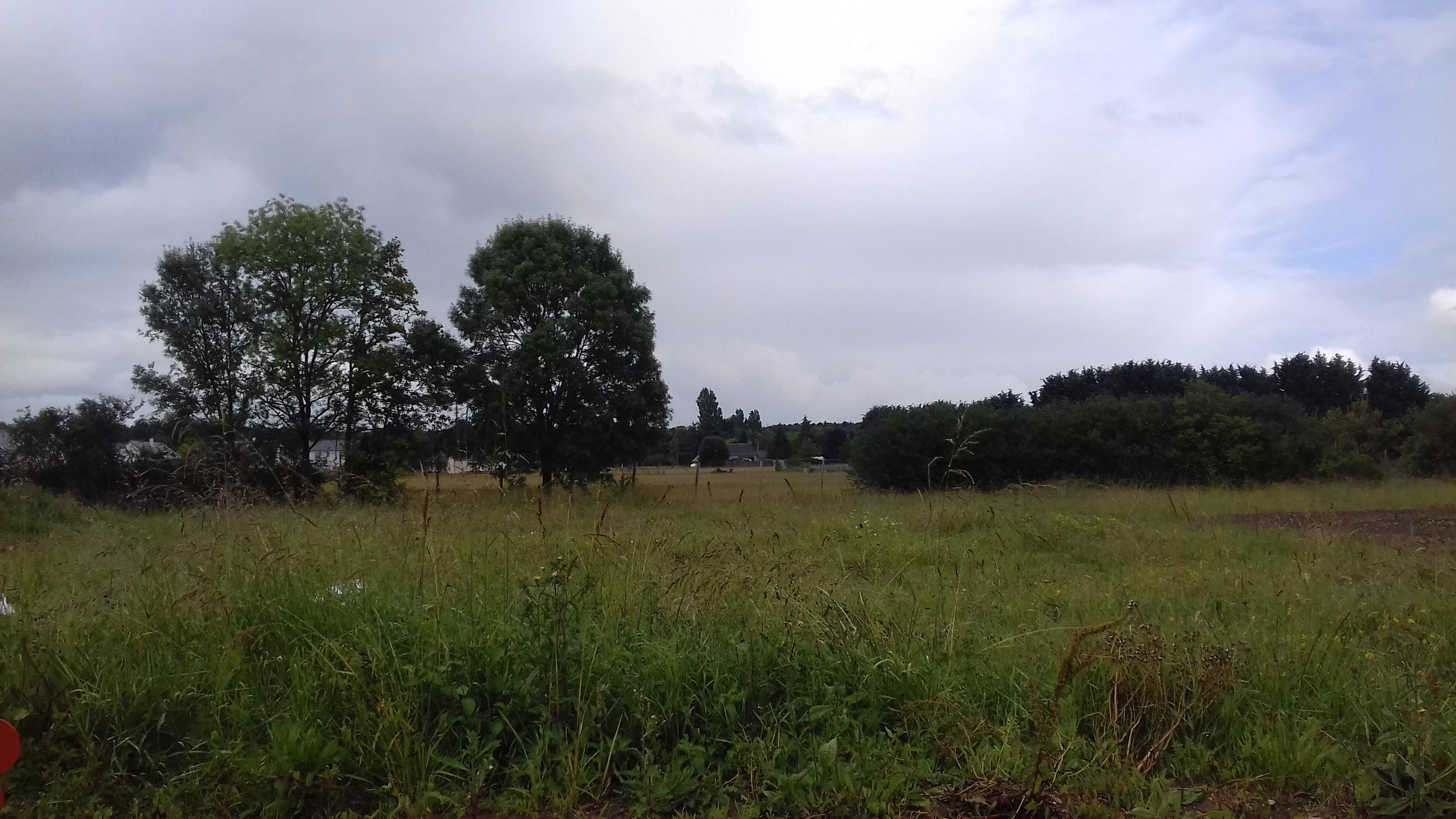 Terrain constructible à Cléré-les-Pins
