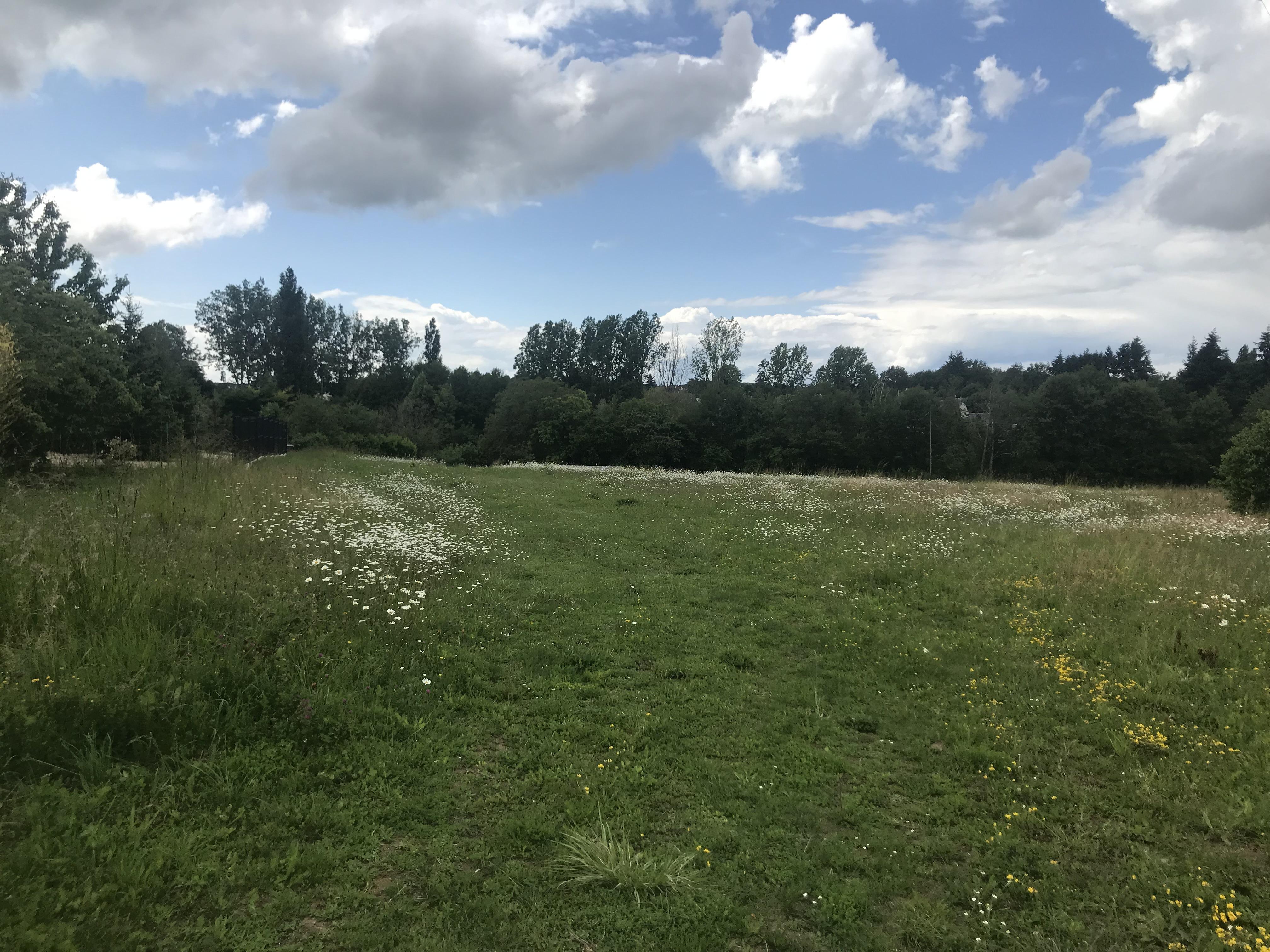 Terrain constructible à Charentilly