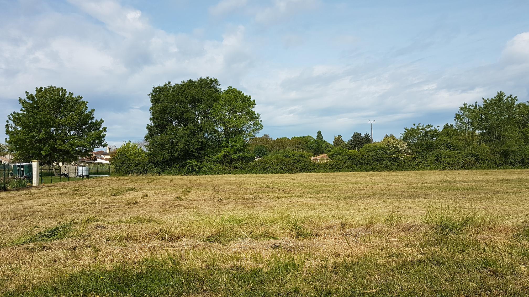 Terrain constructible à Vertheuil