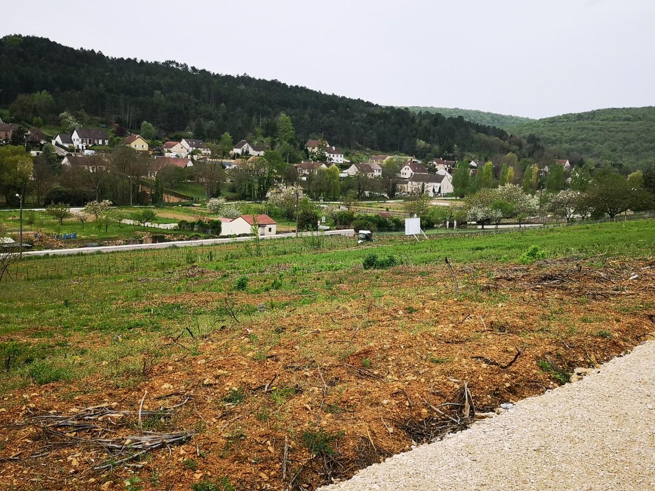 Terrain constructible à Savigny-lès-Beaune