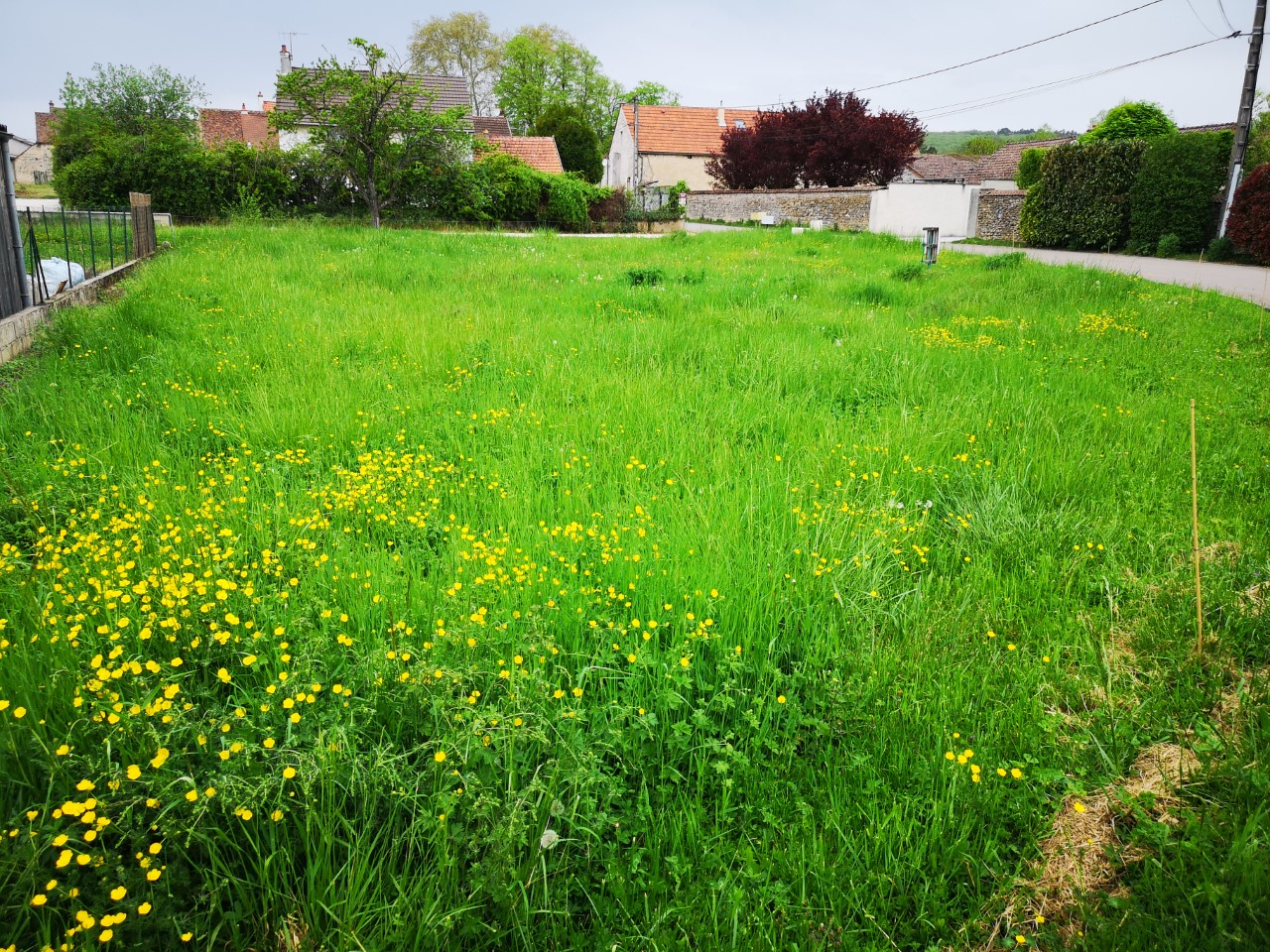 Terrain constructible à Premeaux-Prissey