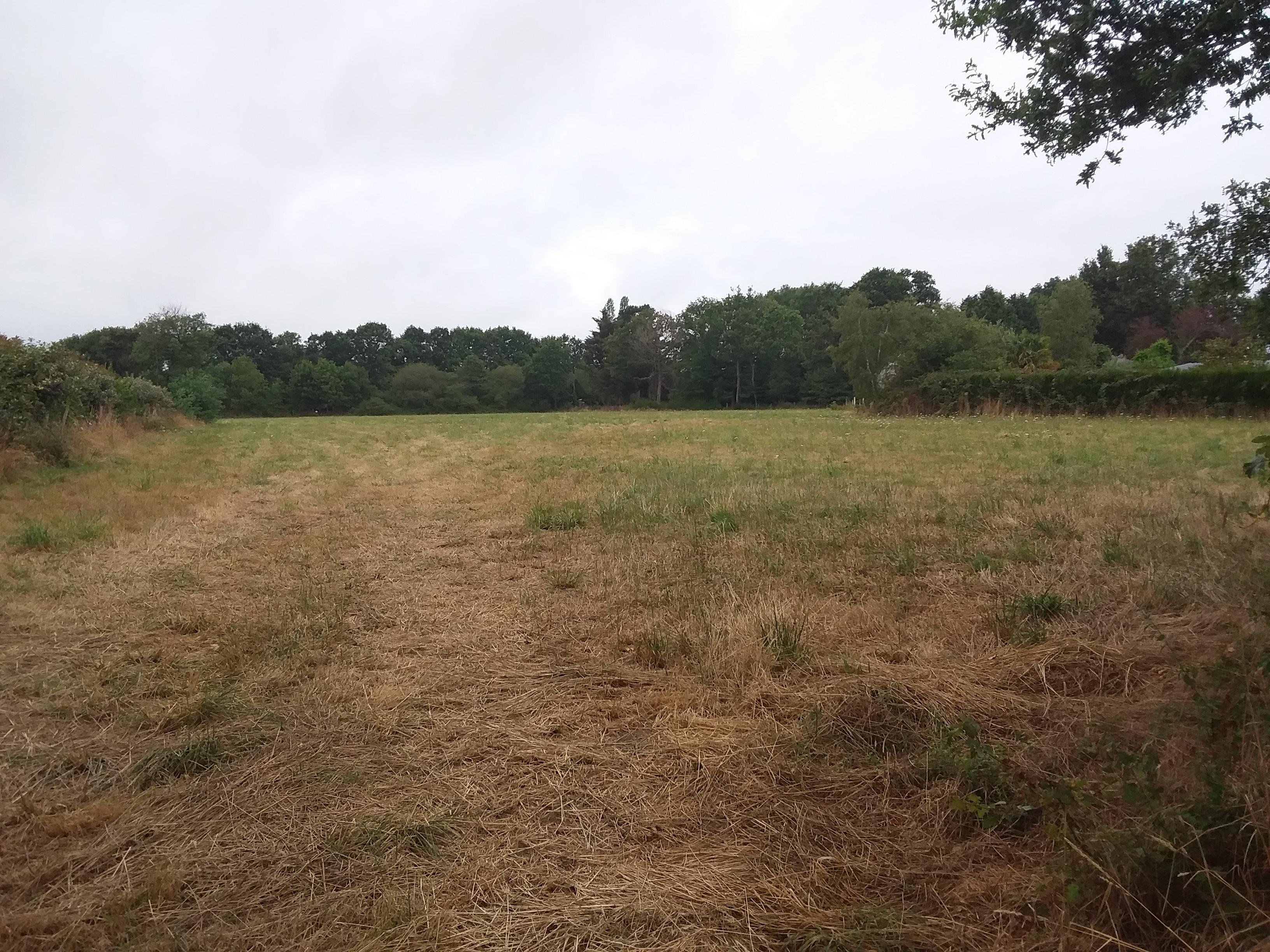 Terrain constructible à Guenrouet
