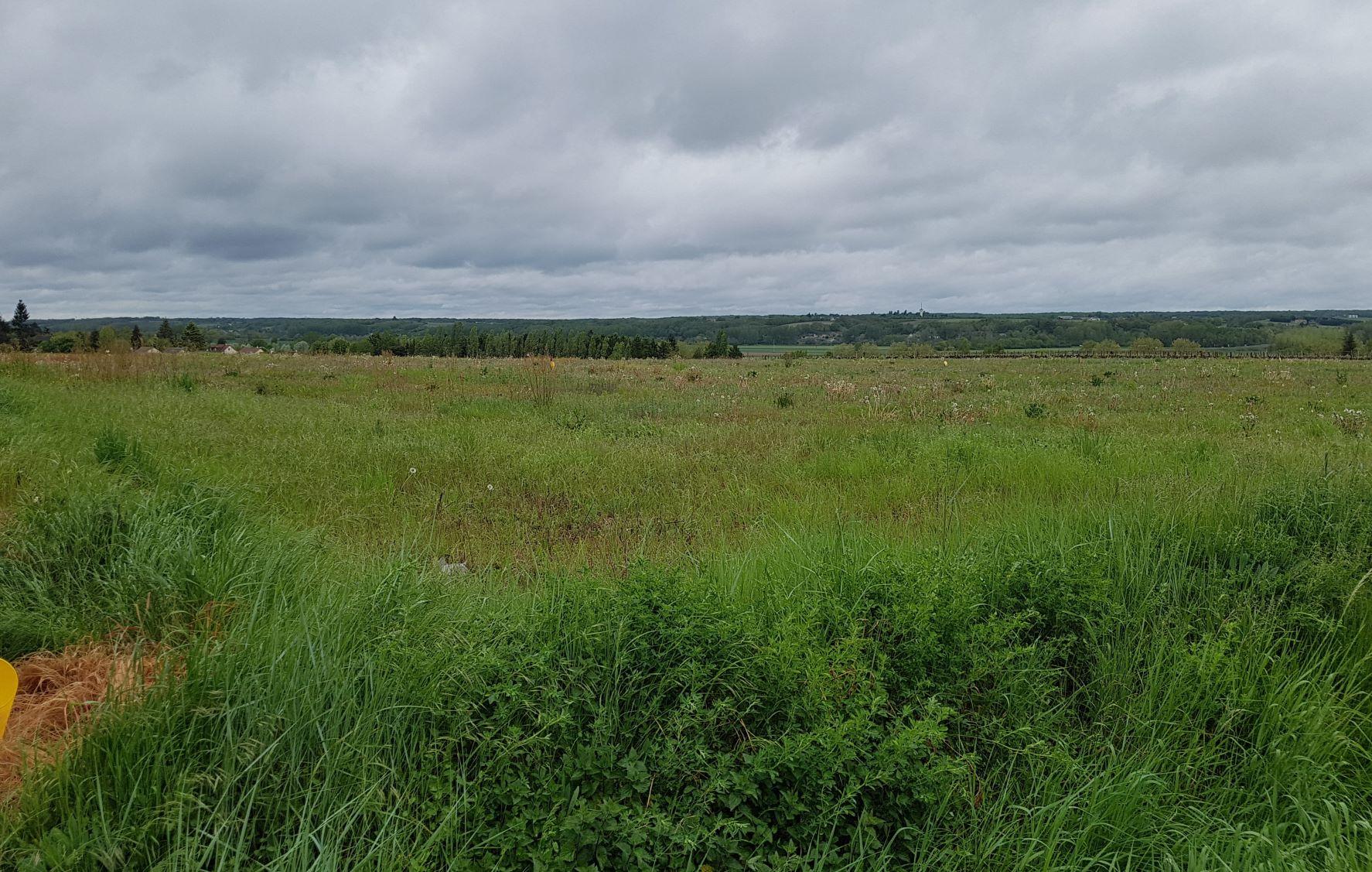 Terrain constructible à Bléré