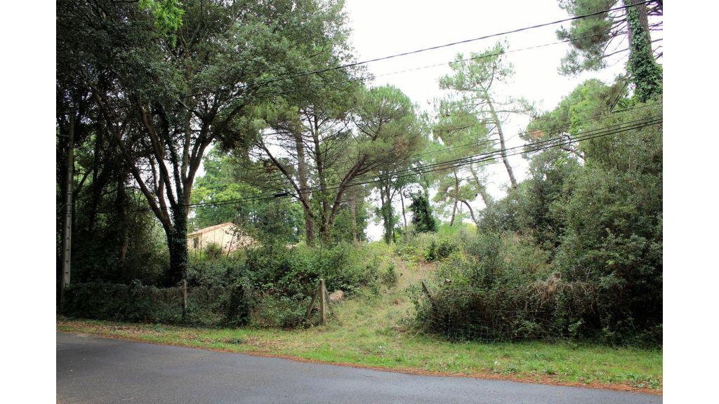 Terrain constructible à Saint-Brevin-les-Pins