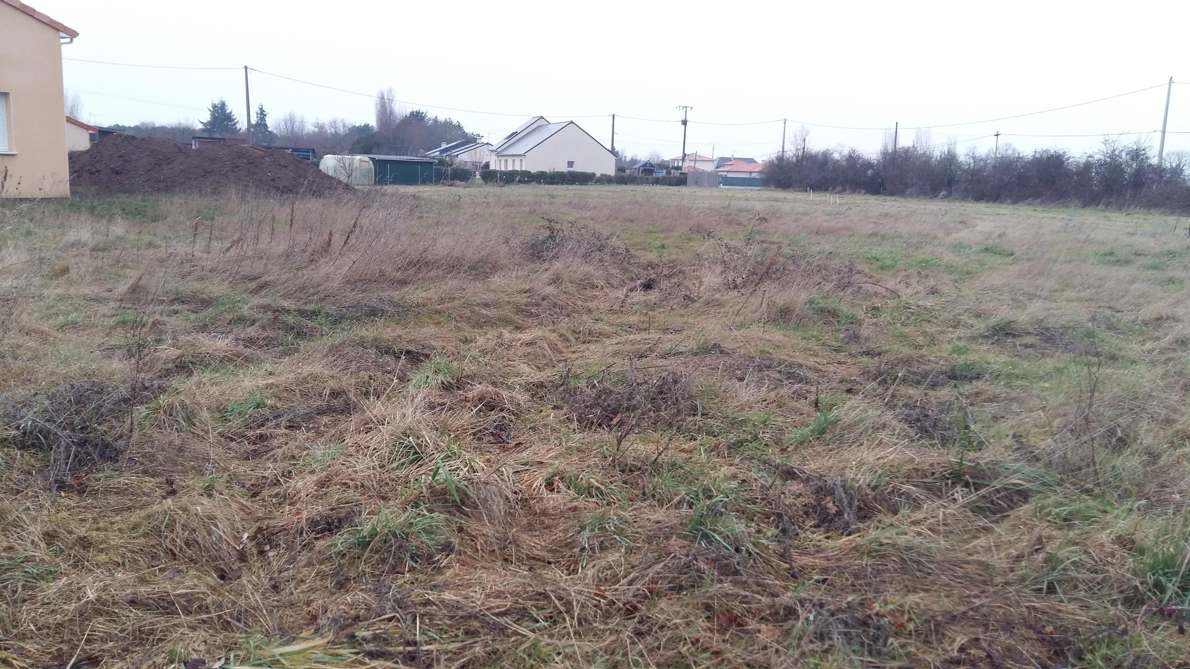 Terrain constructible à Saint-Hilaire-de-Loulay