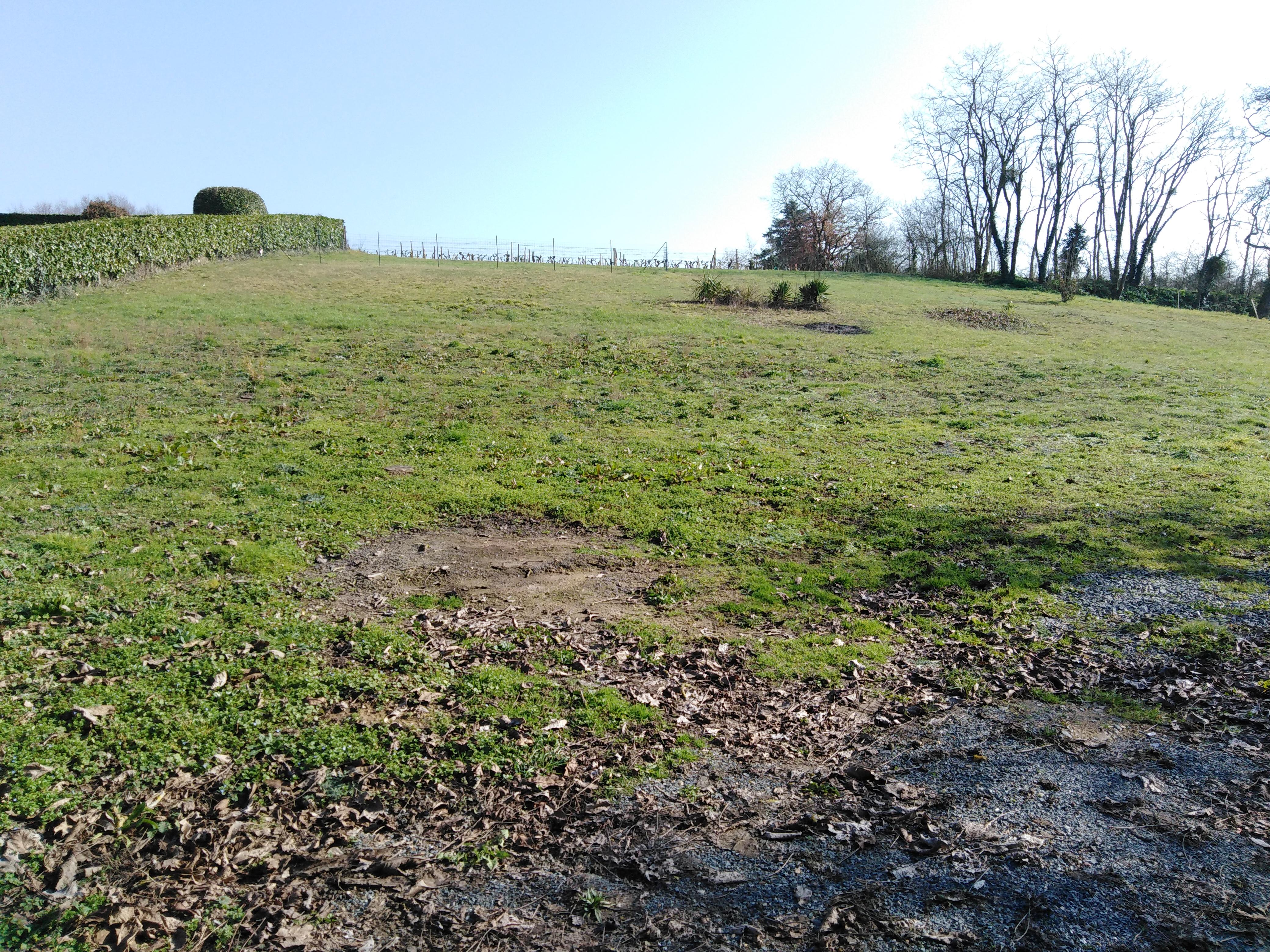 Terrain constructible à Bouillé-Loretz