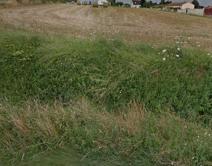 Terrain constructible à Scorbé-Clairvaux