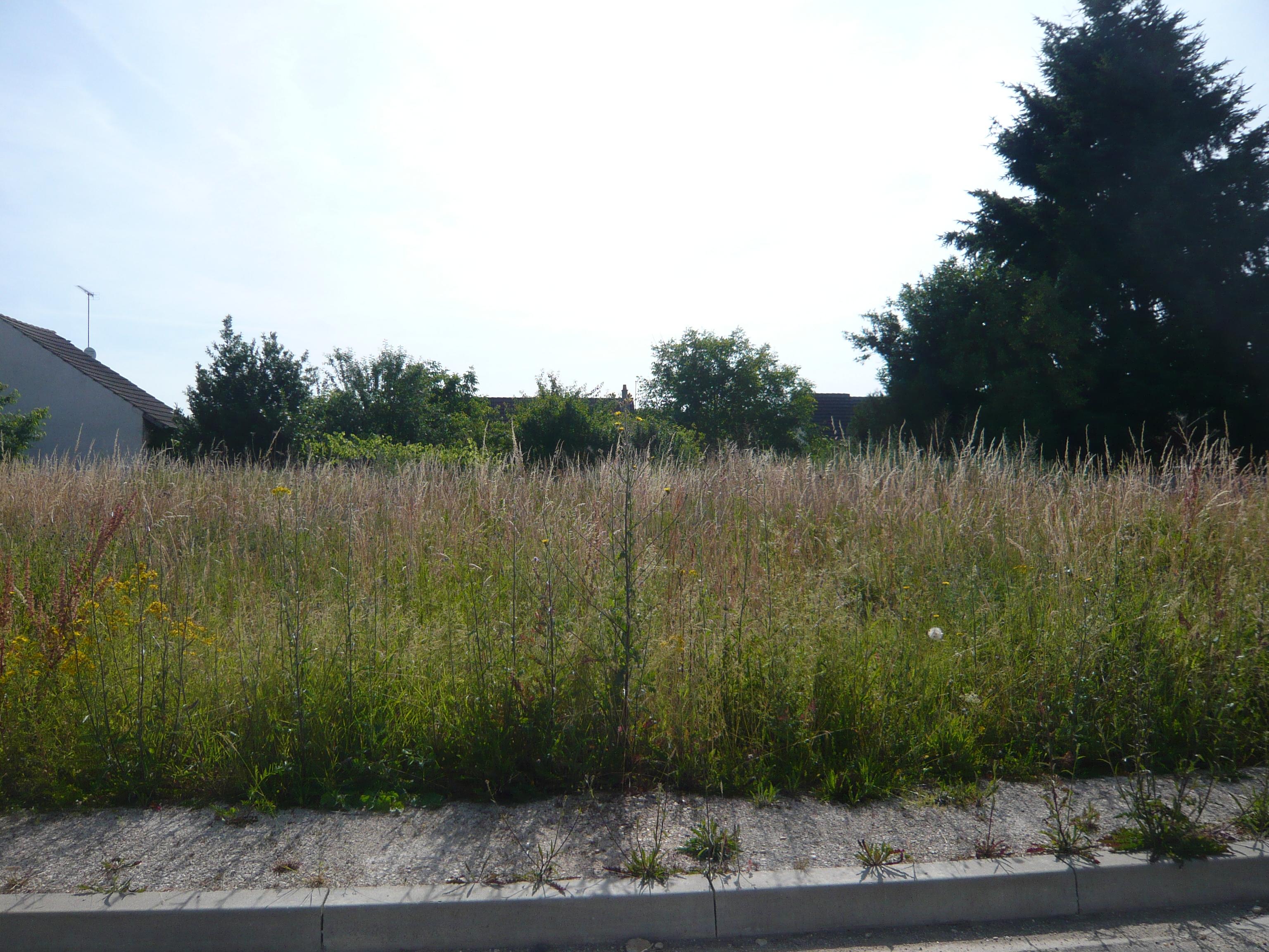 Terrain constructible à Fontenay-sur-Loing