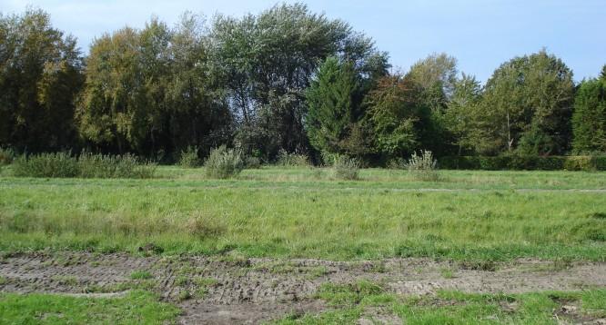 Terrain constructible à Bourg