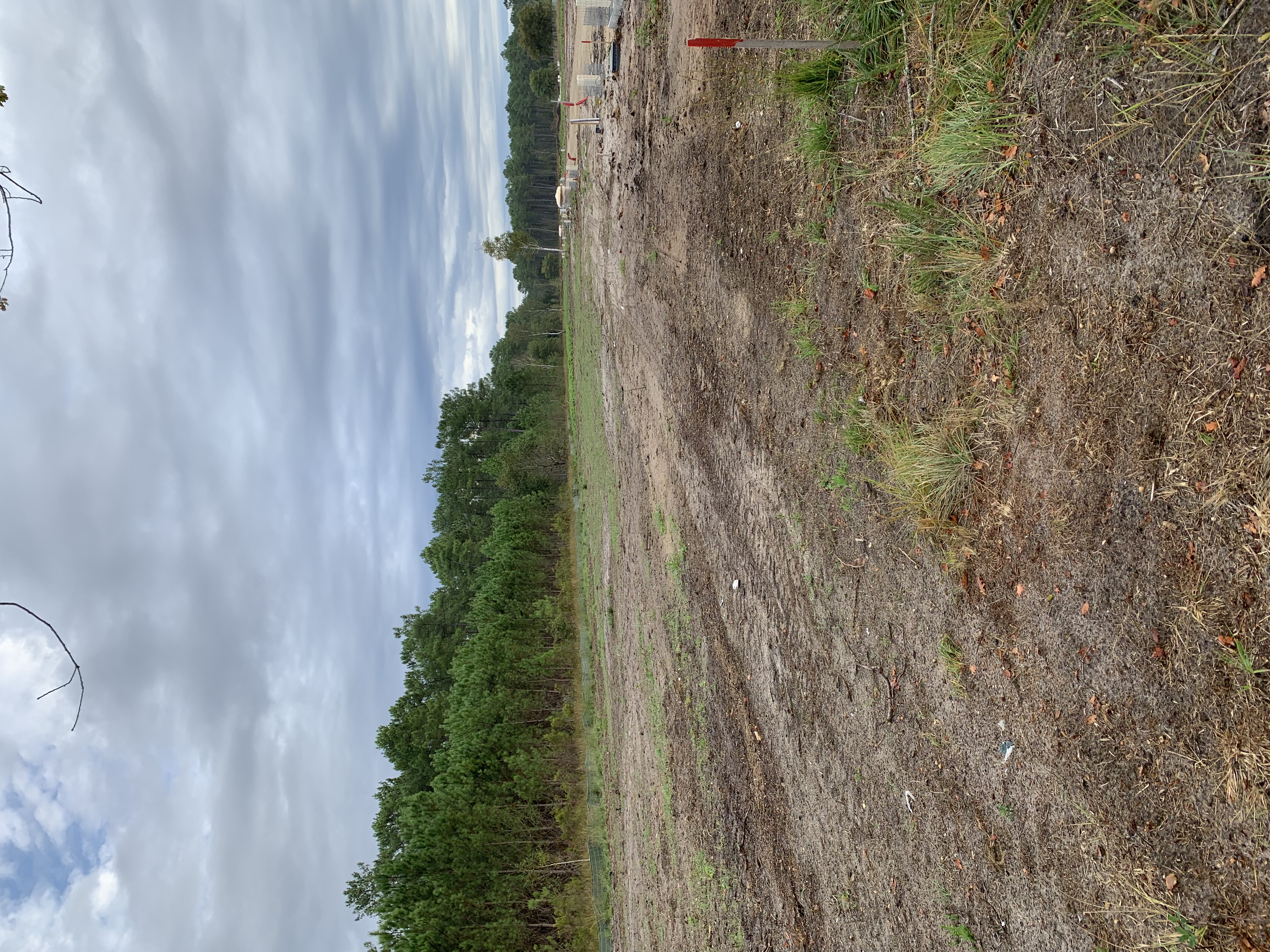 Terrain constructible à Biganos