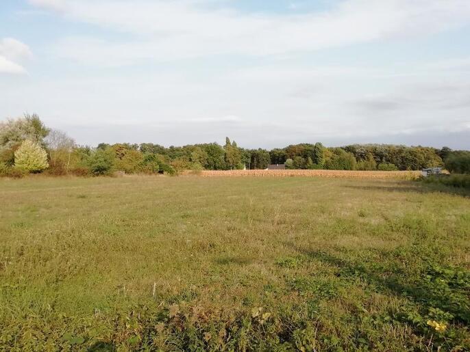 Terrain constructible à Blaison-Gohier