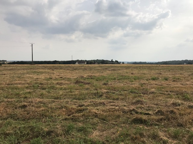 Terrain constructible à Pernay