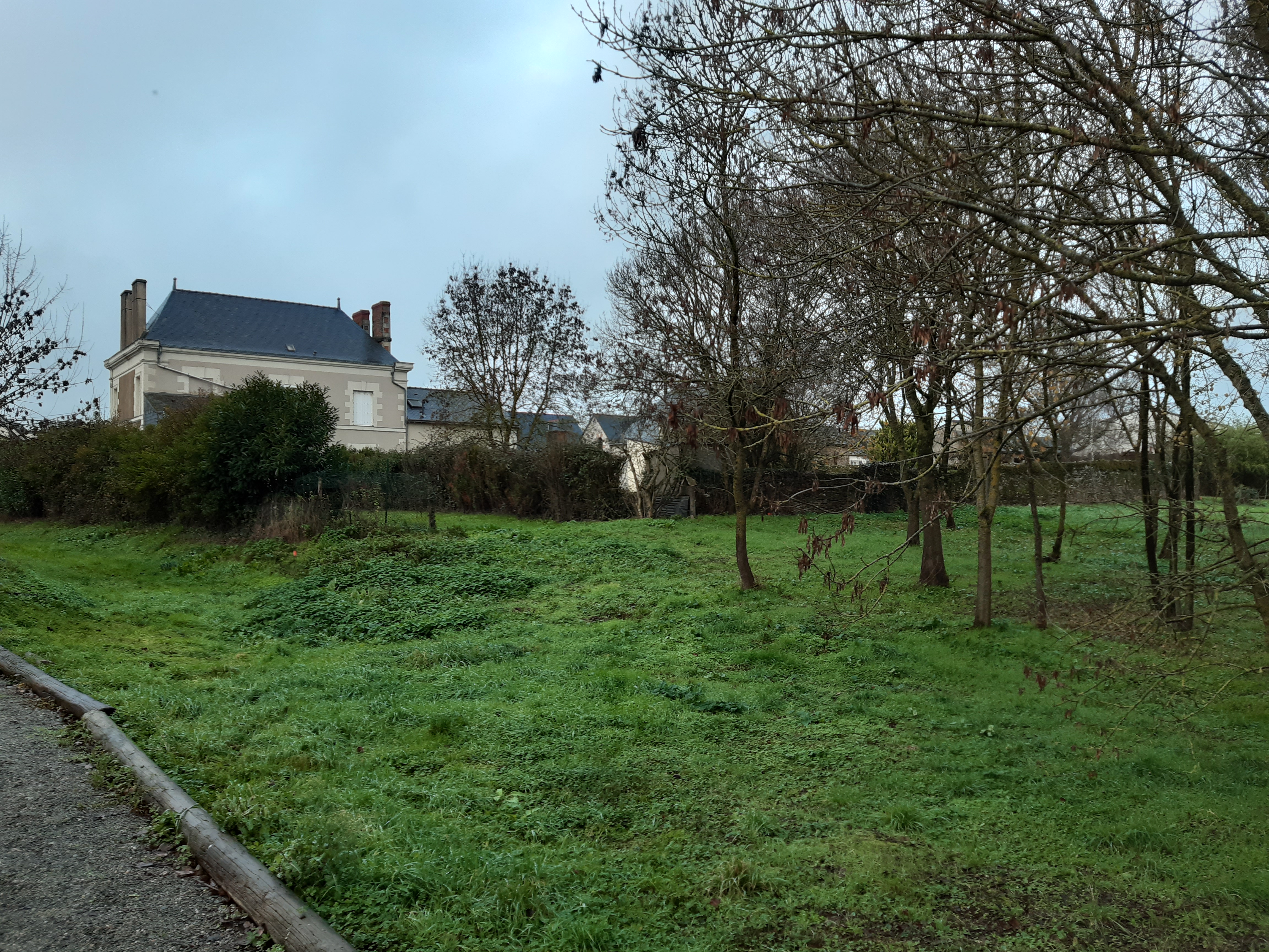 Terrain constructible à Lion-d'Angers