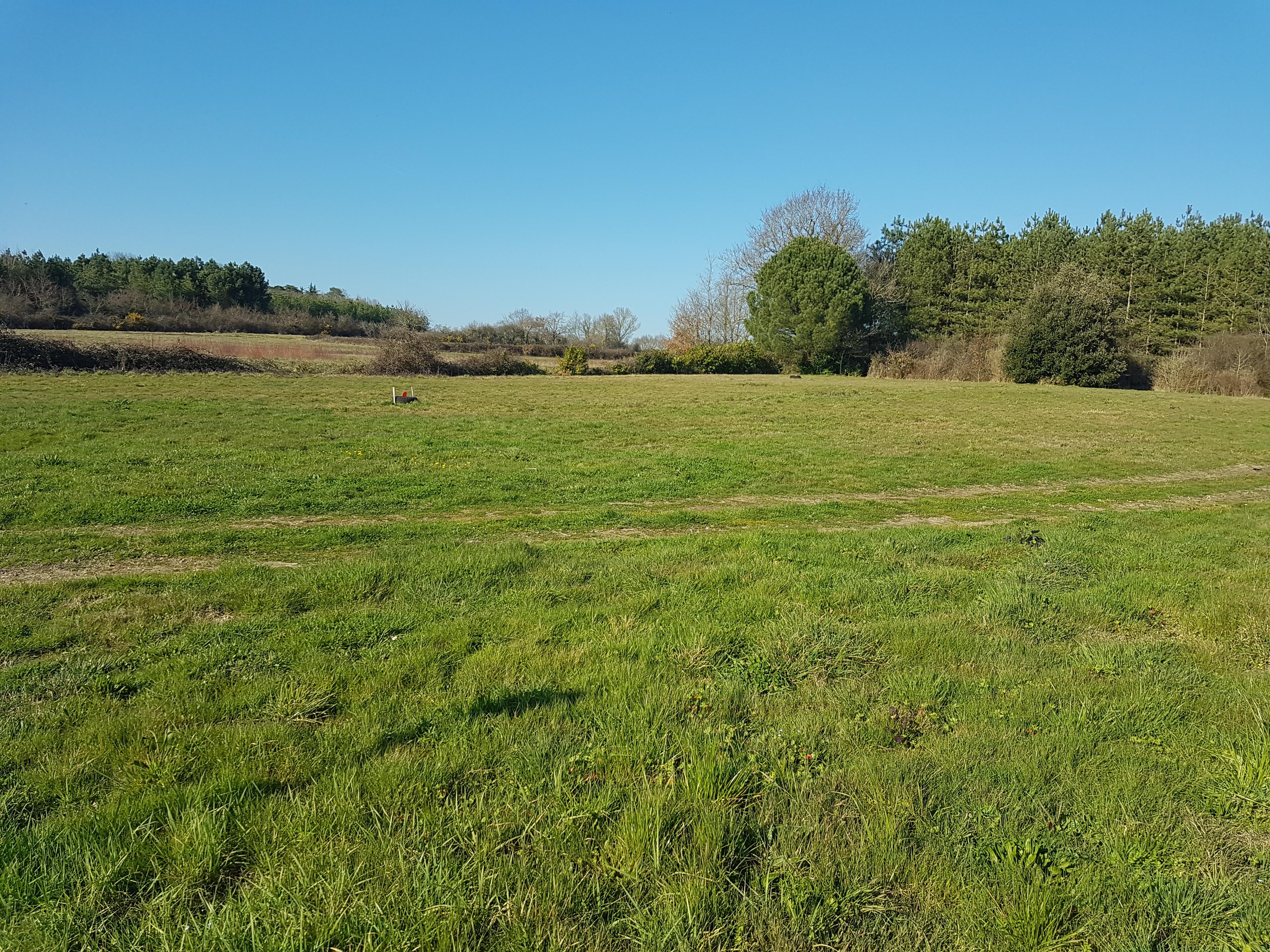 Terrain constructible à Saint-Hilaire-de-Chaléons