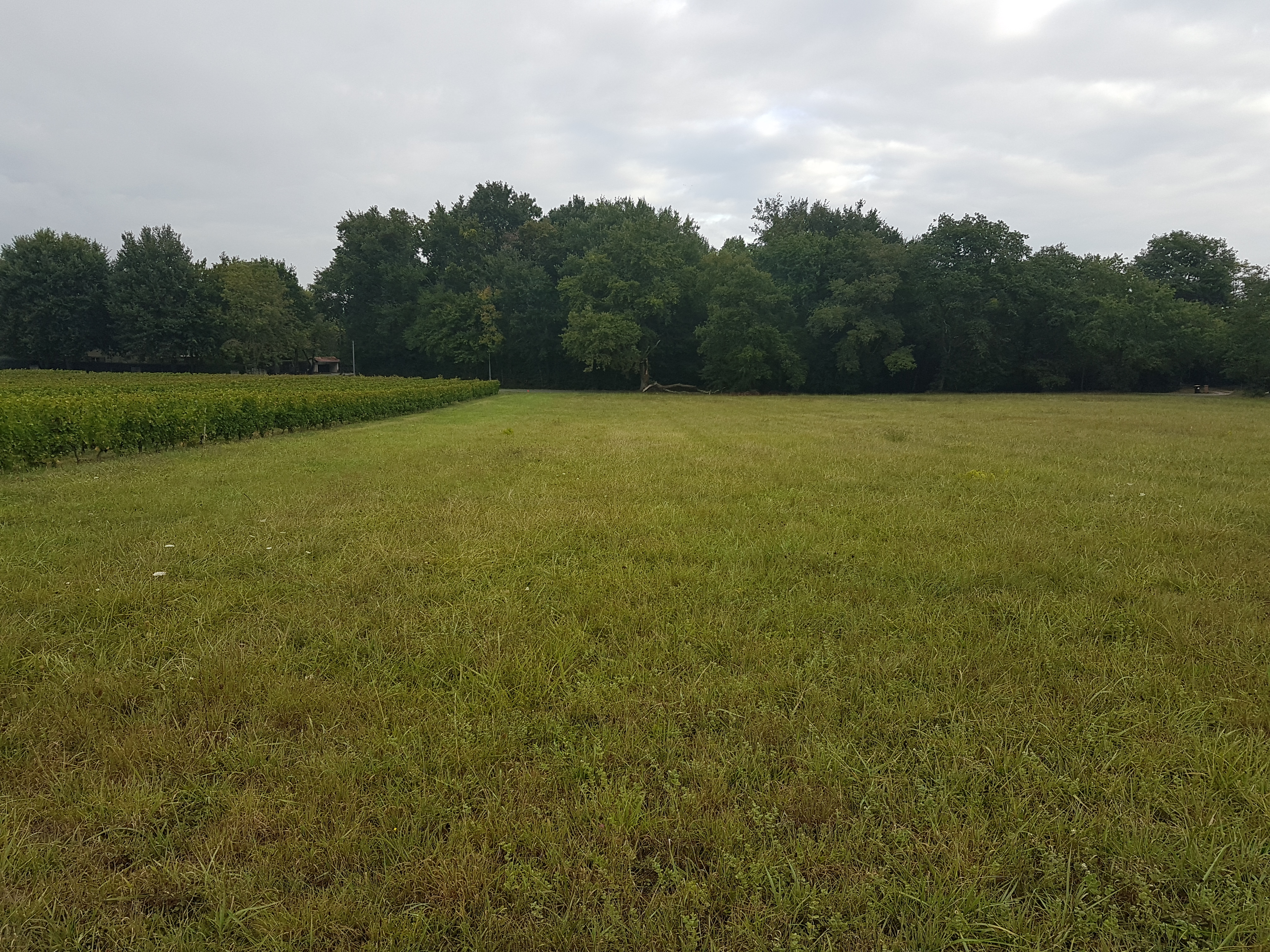 Terrain constructible à Peujard