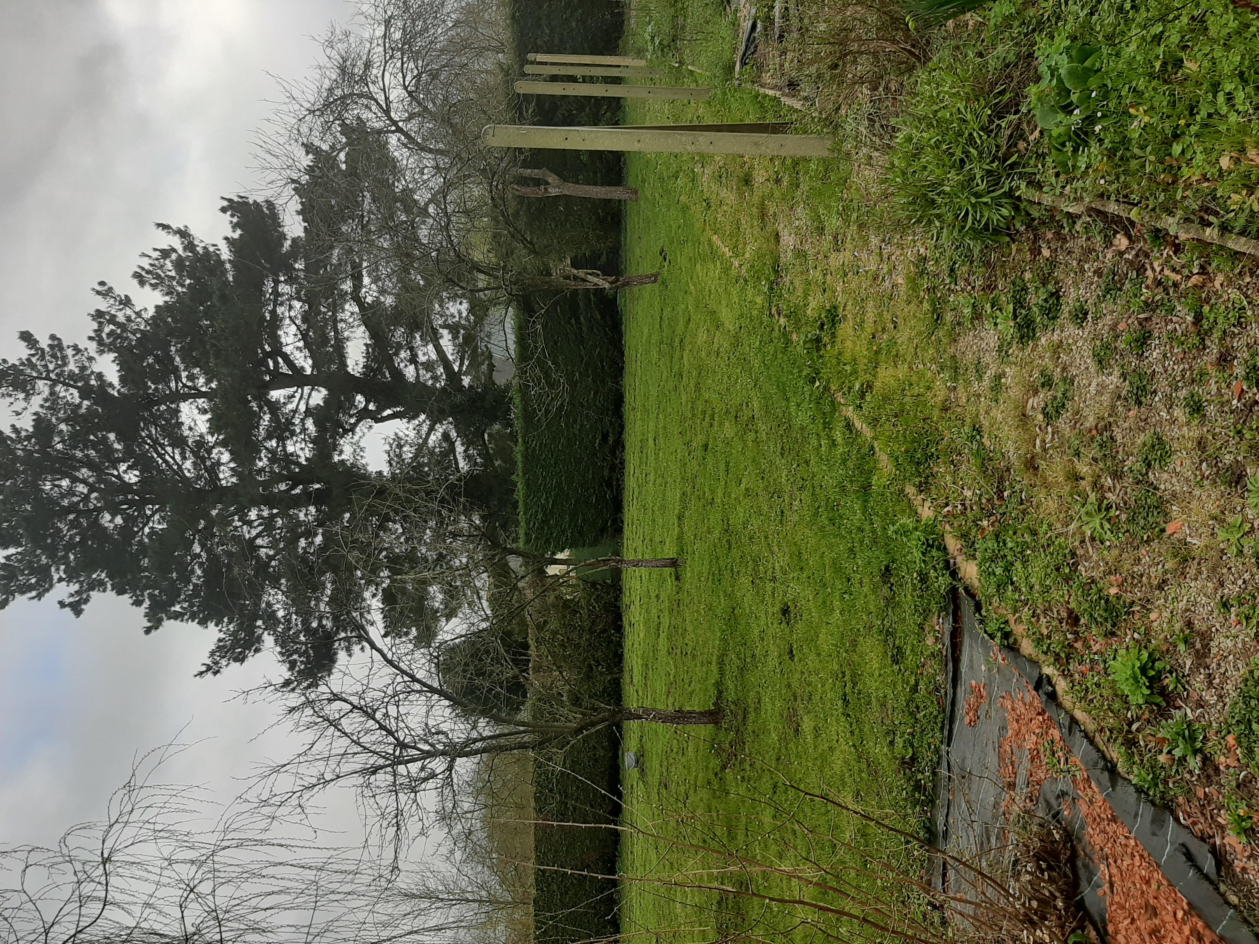 Terrain constructible à Saint-Herblon