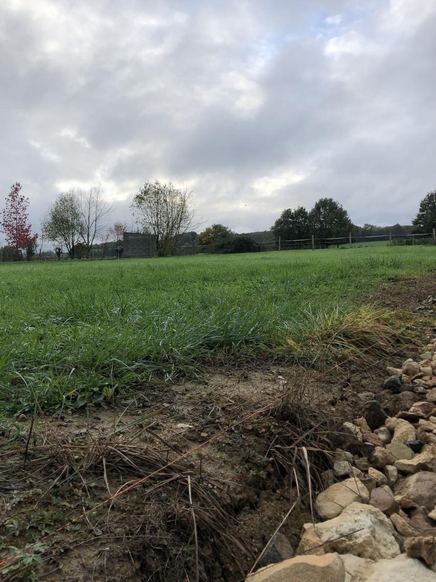Terrain constructible à Rairies