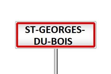 ST-GEORGES-DU-BOIS.jpg